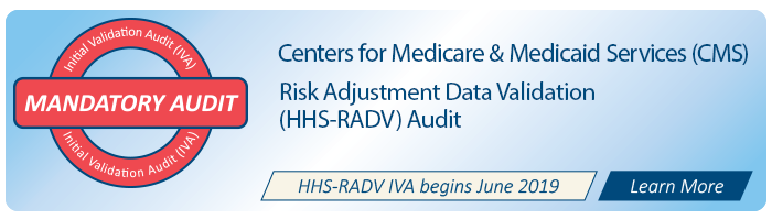 Centers for Medicaid and Medicare Services (CMS) Initial Validation Audit (IVA)